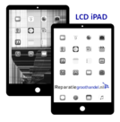 LCD-Retina-Display-iPad-Mini-2-A1489